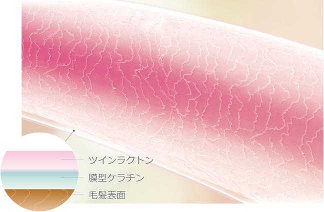 心地よい髪質(補修&キューティクル保護膜形成)