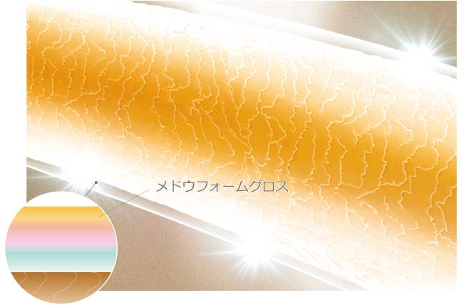 つやめく美髪(補修&複層被膜)