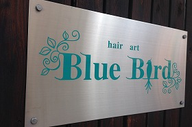 hair art Blue Bird